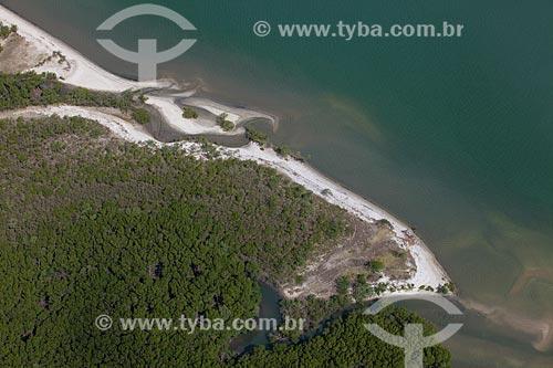 Assunto: Manguezal na Baía de Sepetiba / Local: Rio de Janeiro (RJ) - Brasil / Data: 04/2011