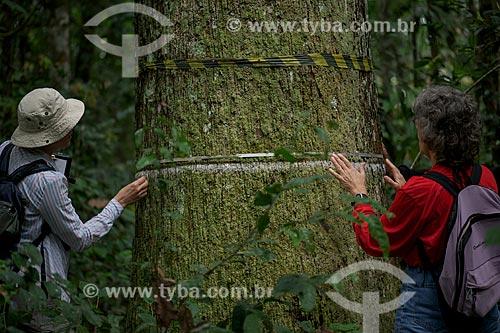 Assunto: Pesquisadoras americanas estudando o tronco de castanheira no Seringal Cachoeira / Local: Xapuri - Acre (AC) - Brasil / Data: 05/2013