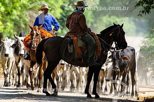 Assunto: Vaqueiros pastoreando gado no Pantanal - próximo ao pantanal do Rio Abobral / Local: Mato Grosso do Sul (MS) - Brasil / Data: 11/2011