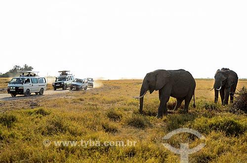 Assunto: Vans com turistas observando elefantes no Parque Nacional de Amboseli / Local: Vale do Rift - Quênia - África / Data: 09/2012