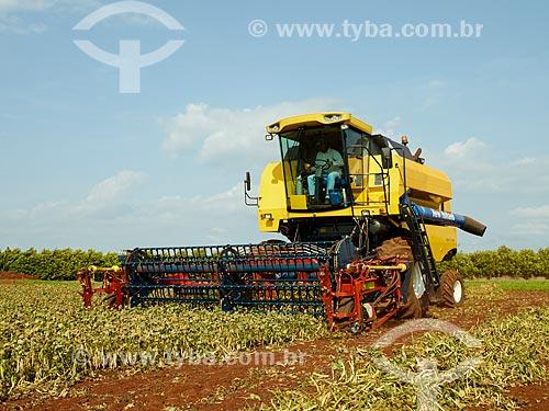 Assunto: Colheita mecanizada de plantação de soja / Local: Holambra - São Paulo (SP) - Brasil / Data: 12/2013