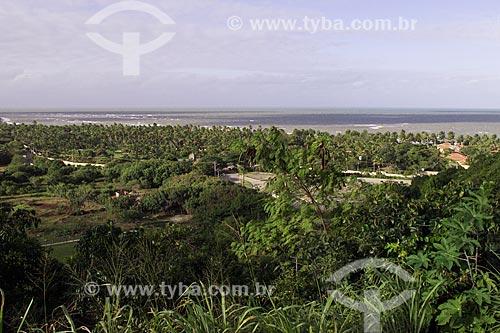 Assunto: Vegetação com o mar ao fundo / Local: Distrito de Arraial DAjuda - Porto Seguro - Bahia (BA) - Brasil / Data: 04/1991