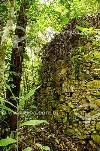 Assunto: Muro de taipa construído por escravos no século XIX no Caminho da Gurita no Parque Municipal da Lagoa do Peri / Local: Florianópolis - Santa Catarina (SC) - Brasil / Data: 12/2013