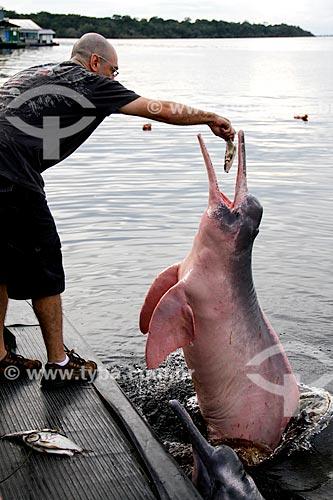 Assunto: Homem alimentando boto-cor-de-rosa (Inia geoffrensis) no Rio Negro / Local: Novo Airão - Amazonas (AM) - Brasil / Data: 03/2012