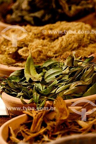 Assunto: Folhas utilizadas para o tingimento do tecido / Local: Peru - América do Sul / Data: 12/2011