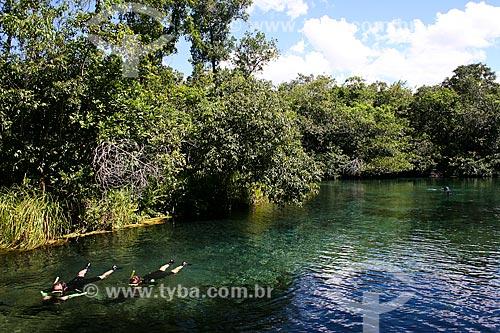 Assunto: Turistas nadando em rio / Local: Bonito - Mato Grosso do Sul (MS) - Brasil / Data: 04/2008