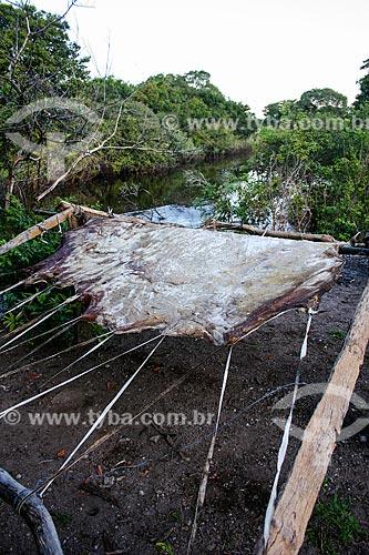 Assunto: Curtimento artesanal de couro / Local: Mato Grosso do Sul (MS) - Brasil / Data: 04/2008
