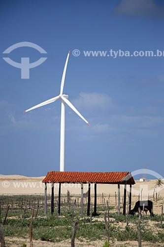 Assunto: Turbinas geradoras de energia eólica em Canoa Quebrada / Local: Aracati - Ceará (CE) - Brasil / Data: 02/2014