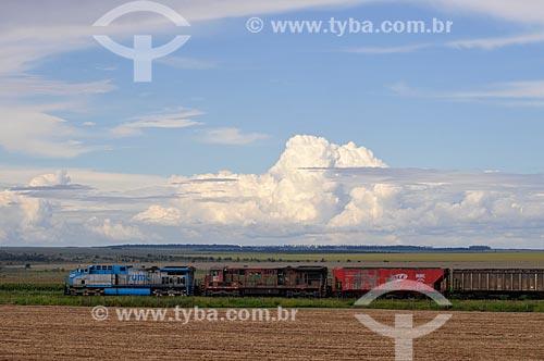 Assunto: Trem carregado / Local: Chapadão do Sul - Mato Grosso do Sul (MS) - Brasil / Data: 02/2014