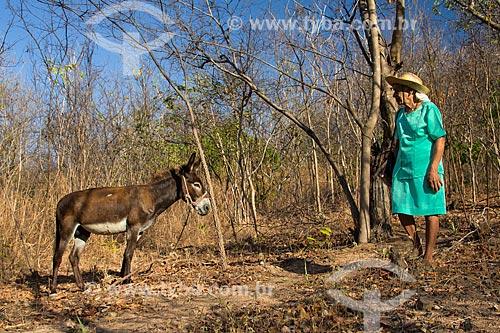Assunto: Idosa próxima ao burro preso na árvore / Local: Juazeiro do Norte - Ceará (CE) - Brasil / Data: 10/2012