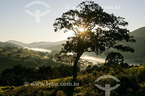 Assunto: Amanhecer no Vale do Matutu / Local: Aiuruoca - Minas Gerais (MG) - Brasil / Data: 05/2006