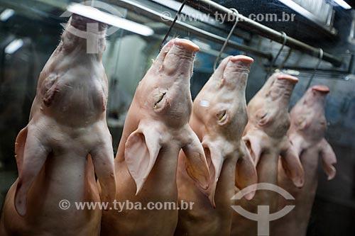 Assunto: Porcos em exposição em açougue do Mercado Municipal de Goiânia / Local: Goiânia - Goiás (GO) - Brasil / Data: 05/2014