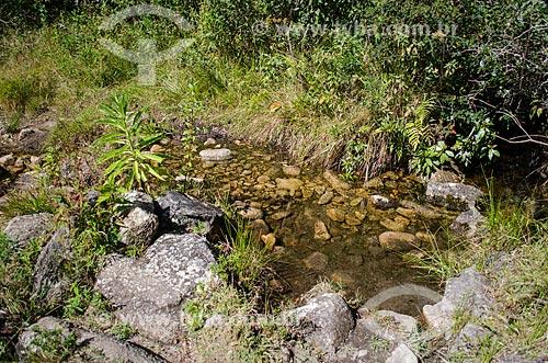 Assunto: Nascente na trilha para a pedra da Caixa de Fósforo no Parque Estadual dos Três Picos / Local: Teresópolis - Rio de Janeiro (RJ) - Brasil / Data: 05/2014