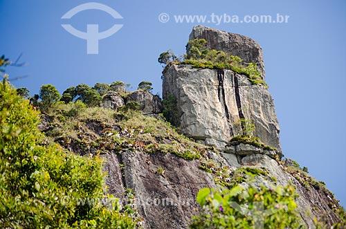Assunto: Vista da Pedra da Caixa de Fósforo no Parque Estadual dos Três Picos / Local: Teresópolis - Rio de Janeiro (RJ) - Brasil / Data: 05/2014