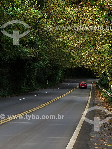 Assunto: Estrada Rota Romântica na BR-116 / Local: Morro Reuter - Rio Grande do Sul (RS) - Brasil / Data: 05/2014