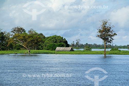 Casebre às margens do Rio Amazonas  - Manaus - Amazonas (AM) - Brasil