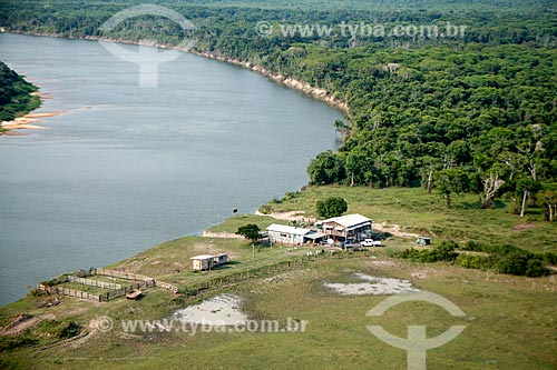 Fazenda Pau DÓleo próximo à Reserva Biológica do Guaporé  - São Francisco do Guaporé - Rondônia (RO) - Brasil