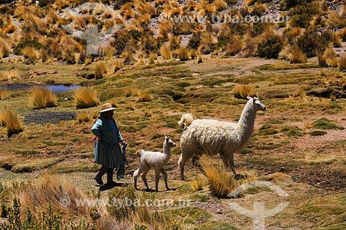 Mulher com Lhamas (Lama glama) próximo ao Salar de Uyuni  - Departamento Potosí - Bolívia