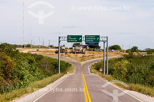 Bifurcação na Rodovia BR-316  - Cabrobó - Pernambuco (PE) - Brasil