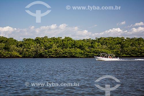 Detalhe de área de mangue no Delta do Parnaíba  - Maranhão (MA) - Brasil