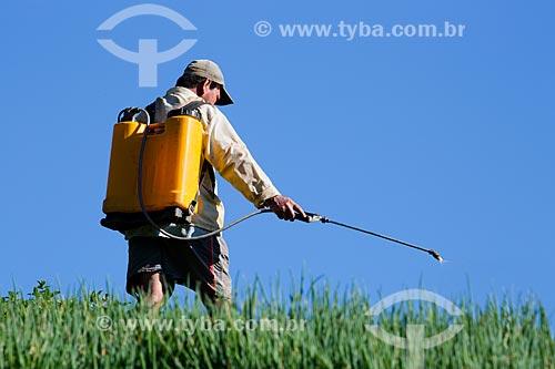 Homem aplicando o inseticida folidol em plantação sem equipamento de proteção  - Petrópolis - Rio de Janeiro (RJ) - Brasil