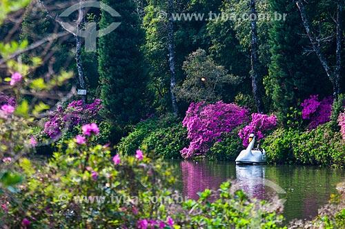 Pedalinho no Lago Negro durante a primavera  - Gramado - Rio Grande do Sul (RS) - Brasil