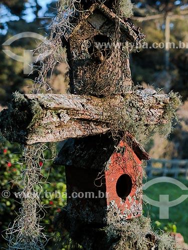 Casas de passarinho coberta por musgo  - São Francisco de Paula - Rio Grande do Sul (RS) - Brasil