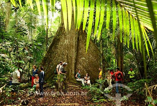 Turistas próximo à Sumaúma gigante (Ceiba pentandra) na Floresta Nacional do Tapajós  - Santarém - Pará (PA) - Brasil