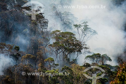 Queimada no Vale do Bonfim próximo ao Parque Nacional da Serra dos Órgãos  - Petrópolis - Rio de Janeiro (RJ) - Brasil