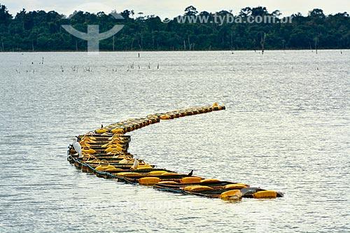 Tanques-rede no reservatório de Itaipu  - Foz do Iguaçu - Paraná (PR) - Brasil