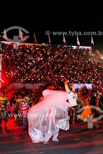 Desfile do Boi Flor do Campo durante o festival de folclore de Guajará-Mirim  - Guajará-Mirim - Rondônia (RO) - Brasil