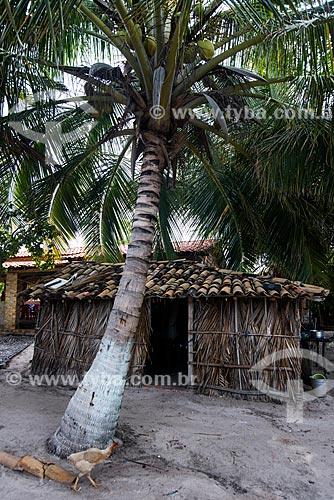 Casa de sapé próximo ao Parque Nacional dos Lençóis Maranhenses  - Barreirinhas - Maranhão (MA) - Brasil