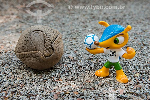 Tatu-bola-da-caatinga (Tolypeutes tricinctus) e Fuleco (Boneco símbolo da Copa do Mundo do Brasil)  - Rio de Janeiro - Rio de Janeiro (RJ) - Brasil