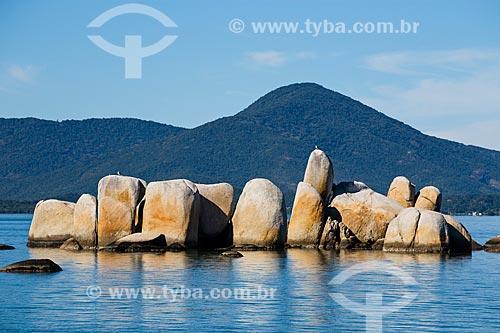 Pedras na orla da Florianópolis  - Florianópolis - Santa Catarina (SC) - Brasil