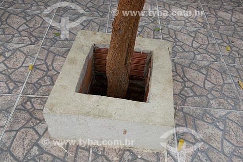 Detalhe de canteiro de árvore com calçamento imitando o piso de cacos de cerâmica - típico de casa em Juazeiro do Norte  - Juazeiro do Norte - Ceará (CE) - Brasil