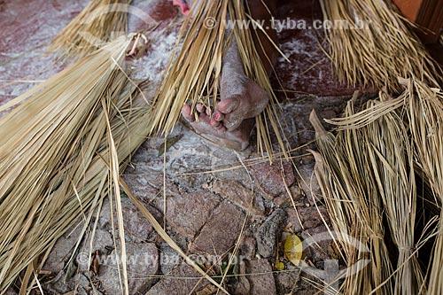 Mulher da Colina do Horto produzindo bolsas artesanais utilizando a palha de carnaúba  - Juazeiro do Norte - Ceará (CE) - Brasil