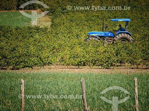 Trator em plantação de café na área rural da cidade de Conceição do Rio Verde  - Conceição do Rio Verde - Minas Gerais (MG) - Brasil