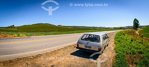 Carro no acostamento da Rodovia Vital Brazil (BR-267) - também conhecida como Rodovia Presidente Itamar Franco  - Conceição do Rio Verde - Minas Gerais (MG) - Brasil