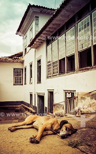 Cachorro dormindo na sede da Fazenda Santa Clara - considerada uma das maiores fazendas do século XIX  - Santa Rita de Jacutinga - Minas Gerais (MG) - Brasil