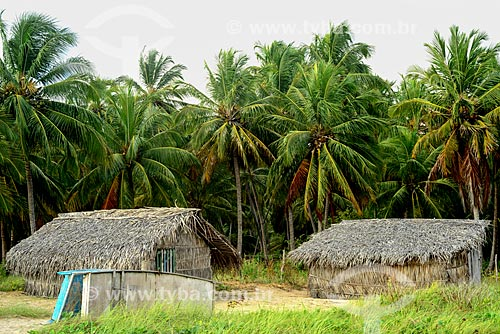 Casas em comunidade caiçara próximo à cidade de Porto de Pedras - Rota Ecológica de Alagoas  - Porto de Pedras - Alagoas (AL) - Brasil