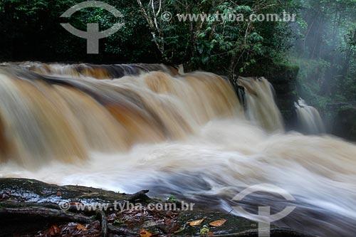 Cachoeira do Santuário na Reserva Biológica da Cachoeira do Santuário  - Presidente Figueiredo - Amazonas (AM) - Brasil
