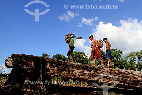 Agricultores no assentamento Taruma Mirim localizado no KM 28 da Estrada BR-174  - Manaus - Amazonas (AM) - Brasil