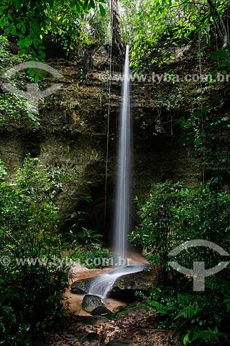 Vista da cachoeira e caverna do Maroaga  - Presidente Figueiredo - Amazonas (AM) - Brasil