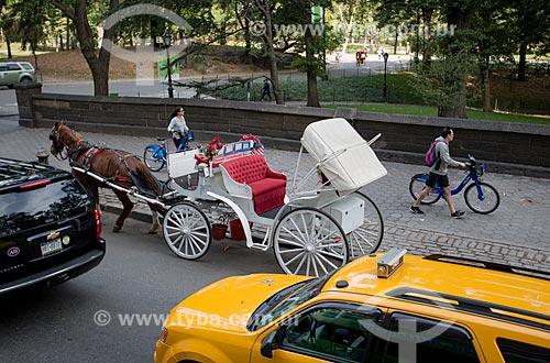 Carruagem para passeio turístico próximo ao Central Park  - Cidade de Nova Iorque - Nova Iorque - Estados Unidos