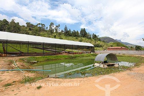 Estufa e lago para irrigação da plantação  - Teresópolis - Rio de Janeiro (RJ) - Brasil