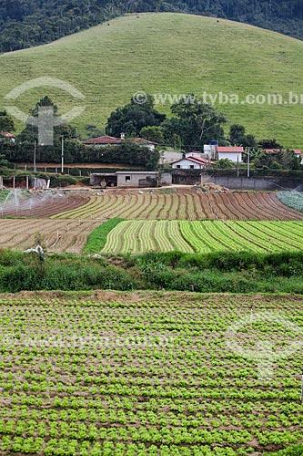 Plantação de hortaliças  - Teresópolis - Rio de Janeiro (RJ) - Brasil