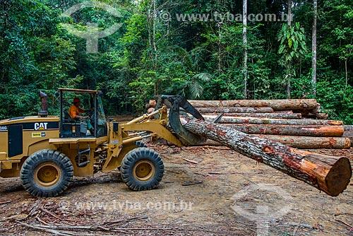 Skidder carregando troncos de madeira  - Paragominas - Pará (PA) - Brasil