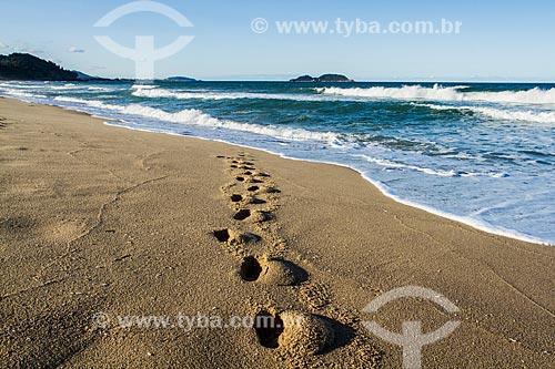 Pegadas na areia da Praia da Armação do Pântano do Sul  - Florianópolis - Santa Catarina (SC) - Brasil