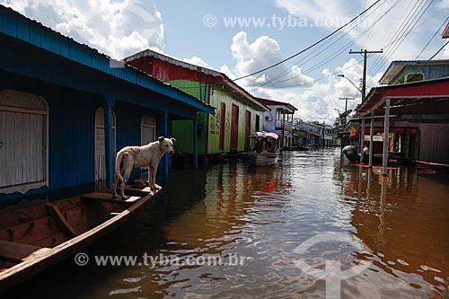 Cidade de Anamã durante a enchente do Rio Solimões  - Anamã - Amazonas (AM) - Brasil