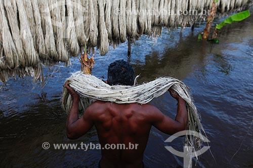 Ribeirinho no processo de secagem de malva durante a enchente do Rio Solimões  - Anamã - Amazonas (AM) - Brasil